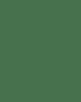Premium Red Roses In Vase